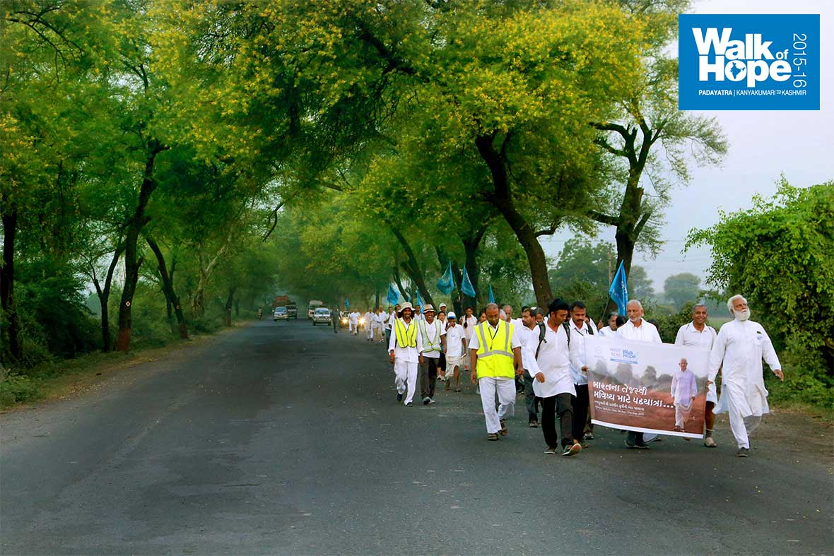 1.WOH-Day-243,-tree-lined-streets-once-again,-from-Khanij-to-Alina,-Kheda,-Gujarat