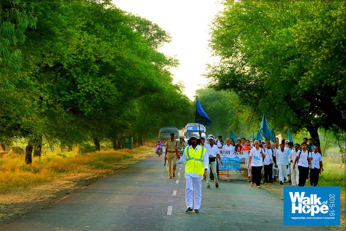 4.WOH-Day-268,-the-tree-lined-Dewas-Ujjain-Road,-MP